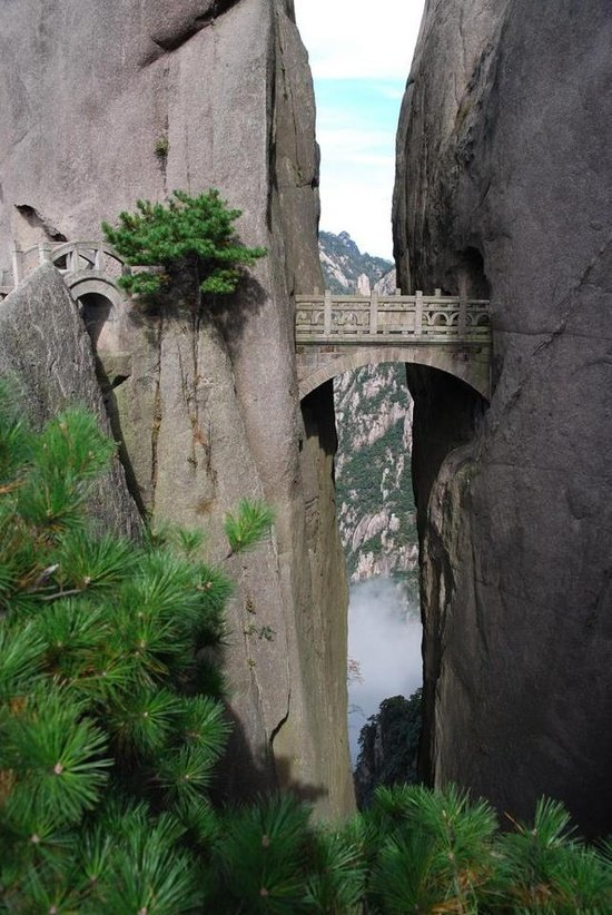 the bridge of immortals the bridge